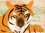 Lion – Kevin Waldron – Illustrators & Artists Agents – Début Art