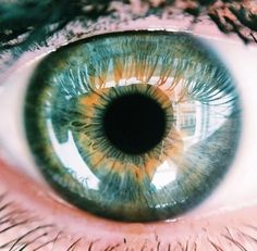 Eyes . Iris . Retina Follow FOSTERGINGER@ PINTEREST for more pins like this. NO PIN LIMITS. Thanks to my 22,000 Followers. Follow me on INSTAGRAM @ ART_TEXAS  Art_Texas At Instagram And Fosterginger75 At Instagram.