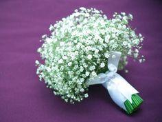 Chuva de prata é uma flor que chama a atenção por sua delicadeza. Branca e pequena são muito usadas em decorações principalmente de casamento isso porque quando usada elas deixam o ambiente agradáv…