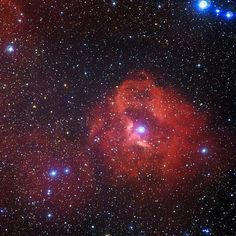 Cosmic rose. A distant group of hot, young stars causes a cloud of hydrogen gas to glow a rosy red 7,300 light-years from Earth, in a view released April 14 by the European Southern Observatory. The cloud, known as Gum 41, lies in the constellation Centaurus. Radiation emitted by the newborn stars near the middle of the image gives the hydrogen a rosy glow in the image from the MPG/ESO 2.2-meter telescope in Chile.