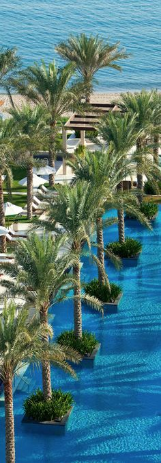 The Ritz-Carlton, Doha - Explore the World with Travel Nerd Nici, one Country at a Time. http://TravelNerdNici.com