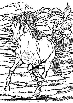 Running Horse Coloring Page For Kids Animal Pages Printables Free