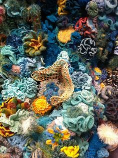 More Coral Reef knit-crochet-ideas-instruction