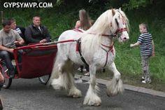 Scene from the Appleby Horse Fair