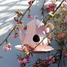 Een oude theepot kan je gebruiken als vogelvoederbak- Teapot Birdfeeder...