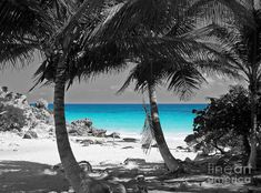 Black and White Photography with Color | Tulum Mexico Beach Color Splash Black And White Photograph