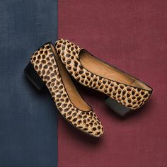 245b99c99db Sofft Shoes   Savvy Styling and Comfort You ll Crave
