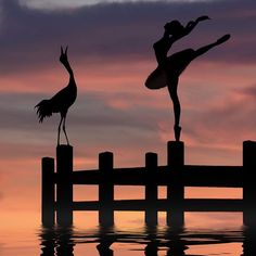 Prima Ballerina.... Couple Silhouette, Silhouette Painting, Bird Silhouette, Dance Pictures, Nature Pictures, Cool Pictures, Silhouette Photography, Dance Photography, Oil Pastel Art