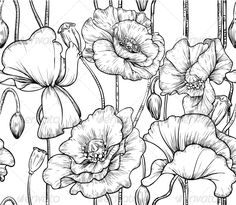 Seamless Pattern of Black and White Poppies - Flowers & Plants Nature