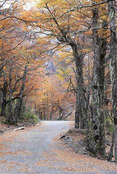 fotografias de julio bosco | Paisajes