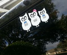 Our OWL family car decal. gonna need to add one! Family Car Decals, Owl Family, Nests, Vinyl Projects, Cricut, Easter, Family Car Stickers, Easter Activities, Create A Critter
