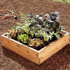 I love the Cedar Raised Bed Kit on Williams-Sonoma.com