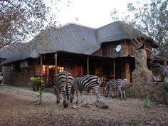 Luxury+4+star+African+Accommodation+bordering+Kruger+National+Park-+Khaya+Umdani+++Vacation Rental in South Africa from @homeaway! #vacation #rental #travel #homeaway