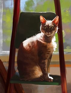 My sweet friend , cat Feanor %)