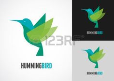 Tropical bird - humming vector icon Illustration