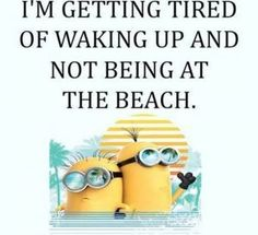 The Minions Quotes Funny 022