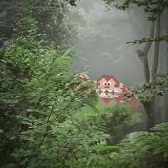 video game meets real life 8 bit art aled lewis donkey kong 8 Bit Art: Video Games vs Real Life Series by Aled Lewis Video Game Art, Video Games, Gorillas In The Mist, Top Photos, 8 Bit Art, 8 Bits, Donkey Kong, Video Game Characters, Photo Series