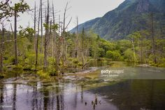 Kamikochi is a remote mountainous highland in the western portion of Nagano Prefecture, Japan. Kamikochi, Japan.| #stockphotos #gettyimages #print #travel