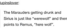 """He's too drunk to make the joke, """"There wolf"""""""