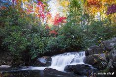 North Georgia Waterfalls: Our Top 10 Favorite Waterfall Hikes