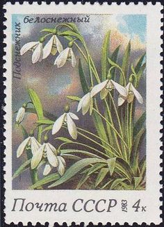 1983 Russian Stamp, Spring Flowers