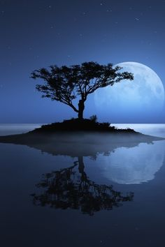Gorgeous Tree on an island with huge blue moon in the background