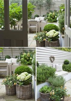 3 Seductive ideas: Backyard Garden Pergola How To Build cottage courtyard garden ideas. Back Gardens, Small Gardens, Outdoor Gardens, Courtyard Gardens, Outdoor Rooms, Outdoor Balcony, Outdoor Living, Diy Gardening, Container Gardening