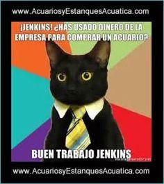 Comencemos el dia con un poquito de humor! FELIZ JUEVES!! #acuario #estanque http://acuariosyestanquesacuatica.com/
