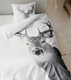 Deer Little Cabin Moose Deer, Oh Deer, Hunting Cabin, Little Cabin, Girl House, Slumber Parties, Bedroom Decor, Bedroom Stuff, Beautiful Pictures