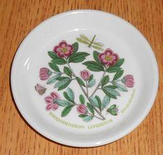 Portmeirion Botanic Garden Sweets Pin Dish Coaster bonbon Lepidotum Rhododendron #Portmeirion #cottage