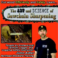 Exquisitely detailed DVD for the woods person on everything you always wanted to know about sawchain sharpening. Chainsaw, Woods, Science, Education, Learning, Videos, Woodland Forest, Forests, Science Comics