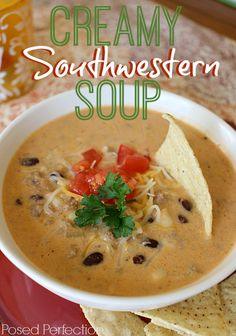 Although hearty and delicious, this Creamy Southwestern Soup will have them begging for seconds!