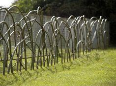 Live fence