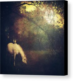Where The Fairytale Begins Canvas Print / Canvas Art by Michele Carter