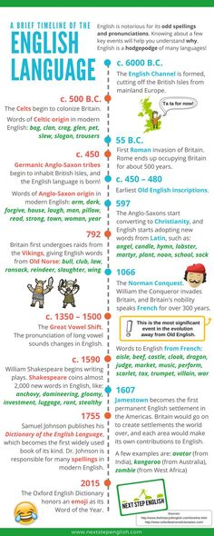 Educational infographic : history of the English language