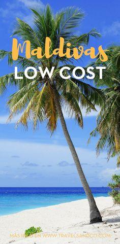 ¿Quieres viajar a Maldivas pero los precios son carísimos? Buenas noticias, viajar barato es posible y voy a contarte cómo. #Maldivasisla #Maldivashoteles #Maldivasfotos