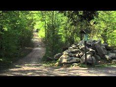 Der Naturpark Zittauer Gebirge - große Vielfalt auf kleinem Raum - YouTube