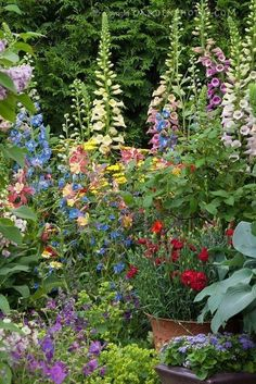landscaping #LandscapeGardening