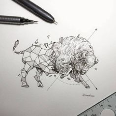 Lovely Half-Geometrical Drawings of Wild Animals