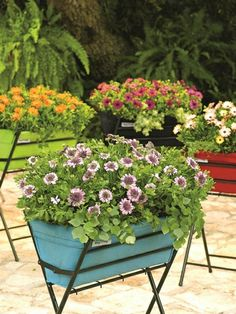 Poppy Planters from Gardener's Supply Co. comes in Red, Light Blue, Lime Green and Black. It's easy to set up and fits almost anywhere! Felt liner breathes and allows excess water to drain.