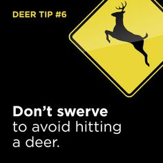Tip #6: Before you catch a deer in your headlights, click for more handy tips to help reduce the odds of a crash. | onstarconnections.com | #deer #tips #driving #onstar