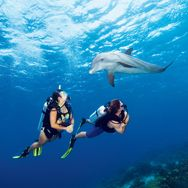 Starting dive classes soon...should be an exciting new adventure (hopefully I don't drown)