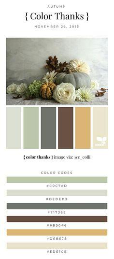 36 Best Colori Marrone Images Colors Beige Brown Beige