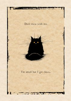 Don't mess with me | #MadOldCatLady | #cat #card
