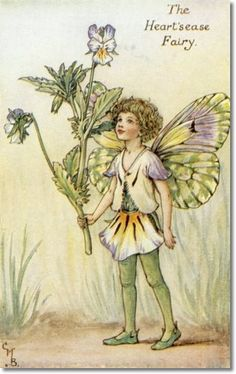 """Vintage print 'The Heart's-Ease Fairy' by Cicely Mary Barker from """"The Book of the Flower Fairies""""; Poem and Pictures by Cicely Mary Barker, Published by Blackie & Son Limited, London [Flower Fairies - Spring] Cicely Mary Barker, Flower Fairies, Grandes Photos, Spring Fairy, Kobold, Vintage Fairies, Beautiful Fairies, Fantasy Illustration, Fairy Art"""