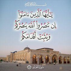 ٧- محمد