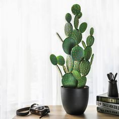 NCYP Large Natural Looking Artificial Faux Fake Prickly Pear Cactus Desert Plant with Black Planter Pot for Home Garden Office Floor Decor - Kaktus Cactus House Plants, Indoor Cactus, Cactus Pot, Prickly Pear Cactus, Cactus Decor, Cactus Flower, Plant Decor, Fake Cactus Plant, Flower Bookey