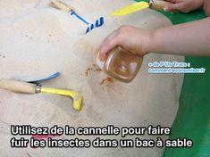 Utilisez de la cannelle pour faire fuir les insectes dans un bac à sable