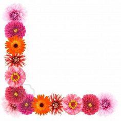 Flower Border Clipart, Flower Border Png, Floral Border, Flower Borders, Simple Flowers, Floral Flowers, Spring Flowers, Pink Rose Wallpaper Border, Wedding Banner Design