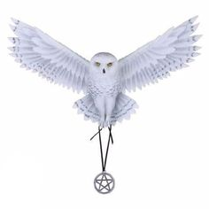 Nemesis Now Anne Stokes Awaken your magic Figurine gift by Anne Stokes World famous artwork design Awaken Your Magic of a snowy white owl emerging from a moonlight forest. World Of Fantasy, Fantasy Art, Anne Stokes, Wall Ornaments, Famous Artwork, Magic S, Snowy Owl, Artwork Design, Wall Plaques